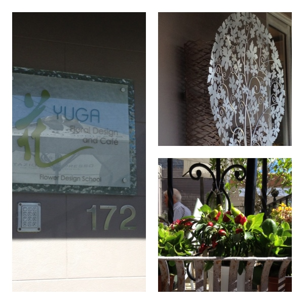 Yuga Cafe & Gallery, 172 St Johns Road, Glebe