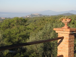 View of nearby Montegabbione from villa